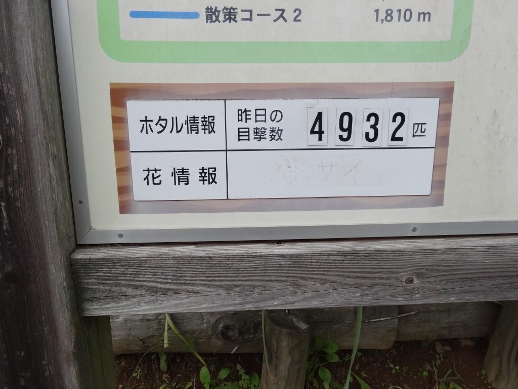 DSC02448