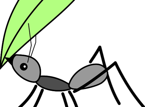 ant-162000_640